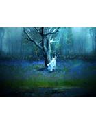 Jason Moser Presents: Hunting Fairies