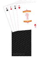 Poker Deck - TTC back - Black