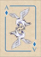 PokerMon Oceanic Deck