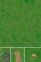 Grass Field Game Mat set 6x4