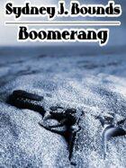 Boomerang: A Crime Novel