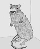 Weekly Beasties: Plague Rat