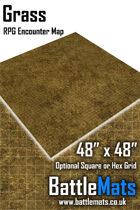"Grass 48"" x 48"" RPG Encounter Map"