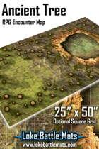 Ancient Tree 25x50 RPG Encounter Map