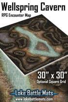 "Wellspring Cavern 30"" x 30"" RPG Encounter Map"