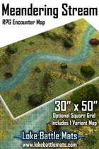 Meandering Stream 30x50 RPG Encounter Map