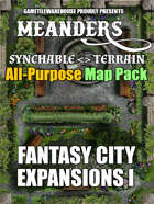 Meanders All-Purpose Map Pack - FANTASY CITY EXPANSION I