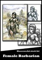 BlaszczecArt Stock Art: Barbarian 3