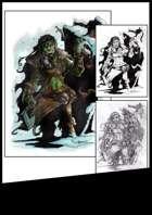 BlaszczecArt Stock Art: Female Ork Barbarian