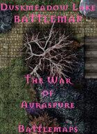 Duskmeadow Lake | Battlemap - The War of Auraspure