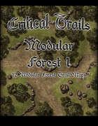 Critical Trails: Modular Forest 1