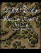 Critical Trails: Modular Forest 3