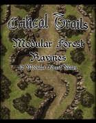 Critical Trails: Modular Forest Ravines