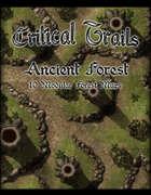 Critical Trails: Ancient Forest 1