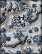 Critical Trails Winter: Winter Forest 1