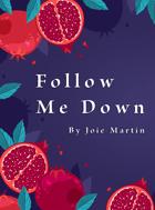 Follow Me Down (Ashcan Edition)