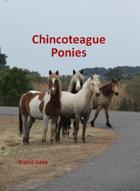 Chincoteague Pony Poker Deck #2