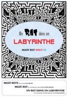 Un rat dans un labyrinthe, Maze Rat en VF