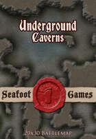 Seafoot Games - Caverns (20x30 Battlemap)