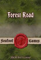 Seafoot Games - Forest Road (20x30 Battlemap)