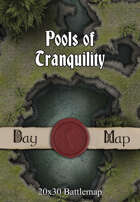 Seafoot Games - Pools of Tranquility   40x30 Battlemap