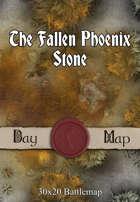 30x20 Battlemap - The Fallen Phoenix Stone