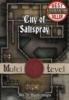30x20 Multi-Level Battlemap - City of Saltspray