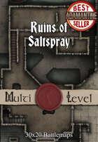 30x20 Multi-Level Battlemap - Ruins of Saltspray