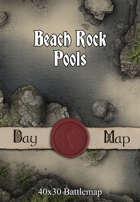40x30 Battlemap - Beach Rock Pools