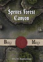 40x30 Battlemap - Sprites Forest Canyon