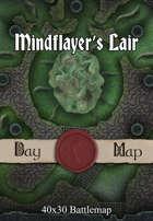 40x30 Battlemap - Mindflayer's Lair