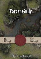 40x30 Battlemap - Forest Gully