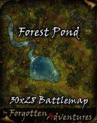 Cliffside Fort 50x36 Battlemap