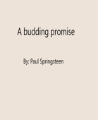 A budding Promise