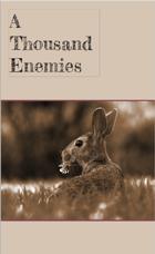 A Thousand Enemies - A Rabbit Warren Dread Supplement