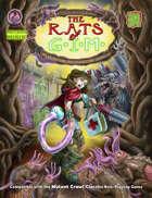 The Rats of GIM