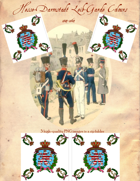 1814-1864 Hesse-Darmstadt Leib-Garde Flag