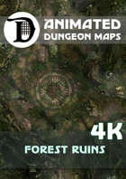 Animated Dungeon Maps: Forest Ruins 4k