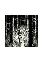 Forest - Stock Art