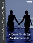 Moonlight on Roseville Beach: A Queer Guide for Amateur Sleuths