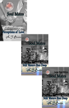Soul Mates Series (hardback) [BUNDLE]