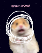 Hamsters In Space!