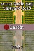 40x30 Fantasy Battle Map - Vineyard Road Pack 1
