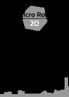 Micro Role 20