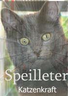 Speilleter: Katzenkraft