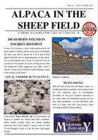 Alpaca in the Sheep Field