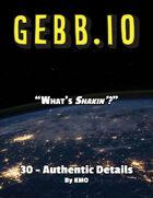 Gebb 30 – Authentic Details