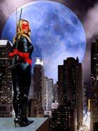 CosPlay: The Crimson Mask Avenger (Poster Sized HD JPG)