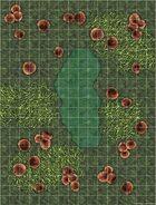 Battlemap: Fungus Jungle