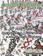 Musketeers & Grenadiers of Imperial Russia 1812.